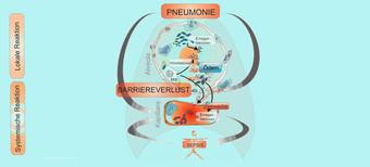 Pneumologie Charite